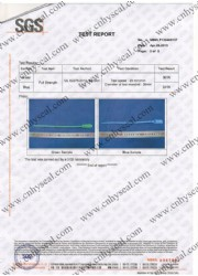 SGS test report of Plastic seal CH311 and CH302
